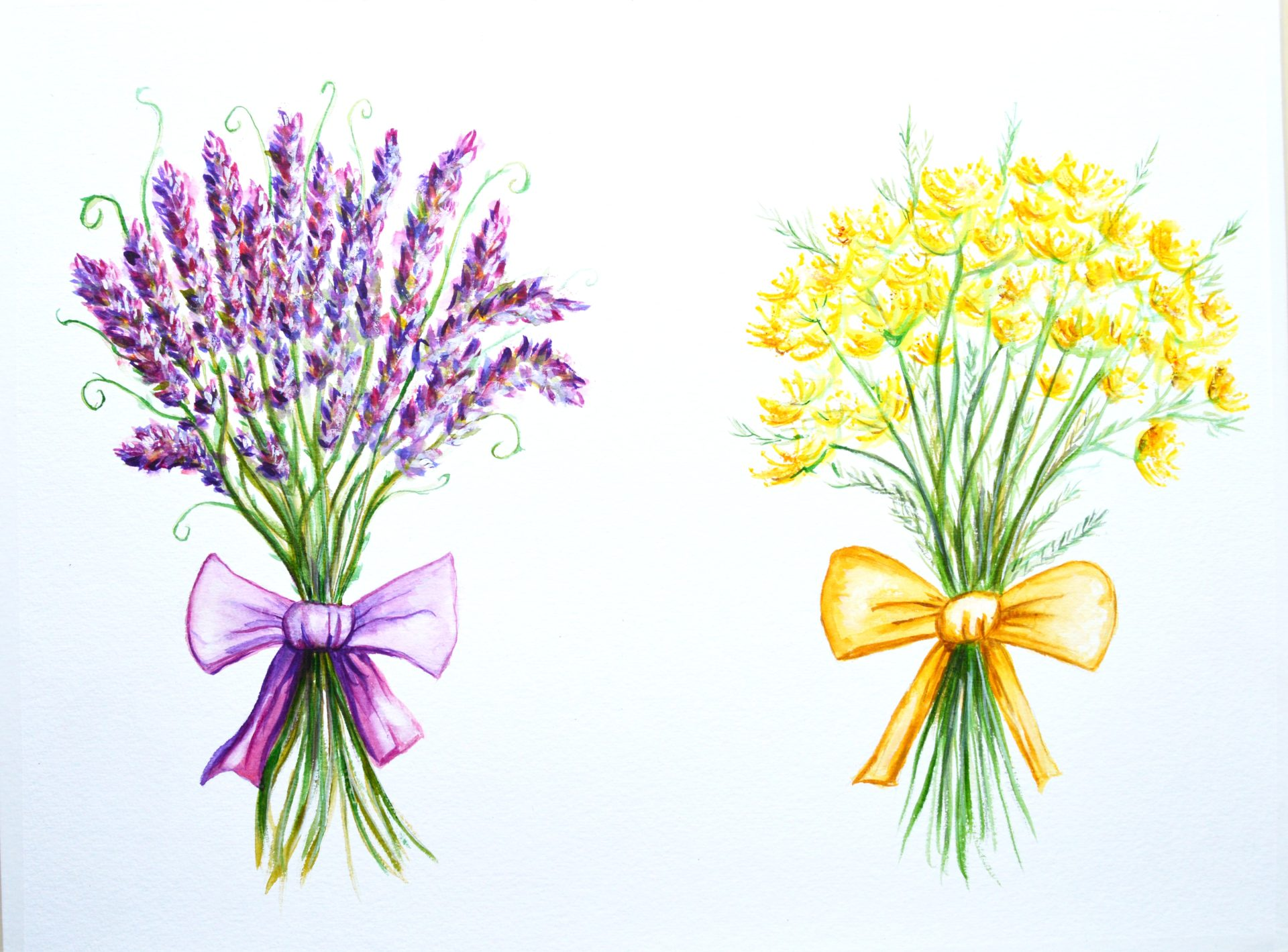 Lavender and Dill