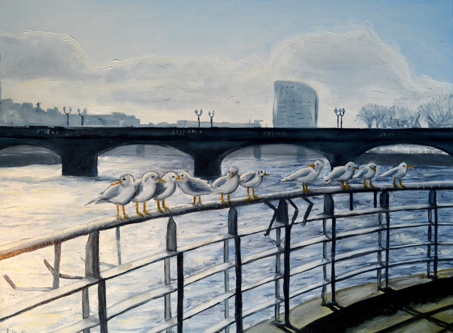 Seagulls on the Shannon